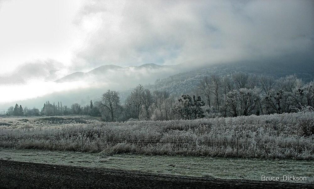 frozen beauty by Bruce  Dickson