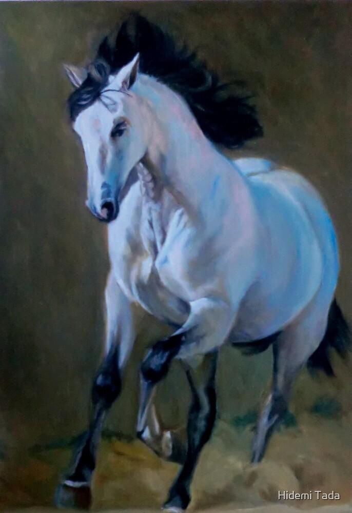a white horse by Hidemi Tada