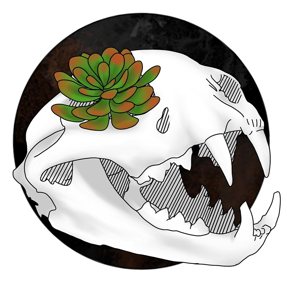 Cat Skull by WitchyTendency
