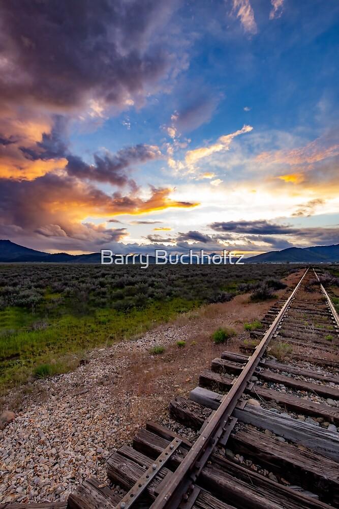 Rail journey 1 by Barry Buchholtz