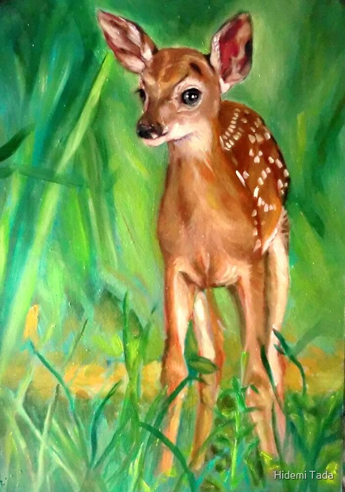 a deer by Hidemi Tada
