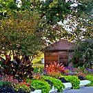 Flower Garden In The Park by Linda Miller Gesualdo