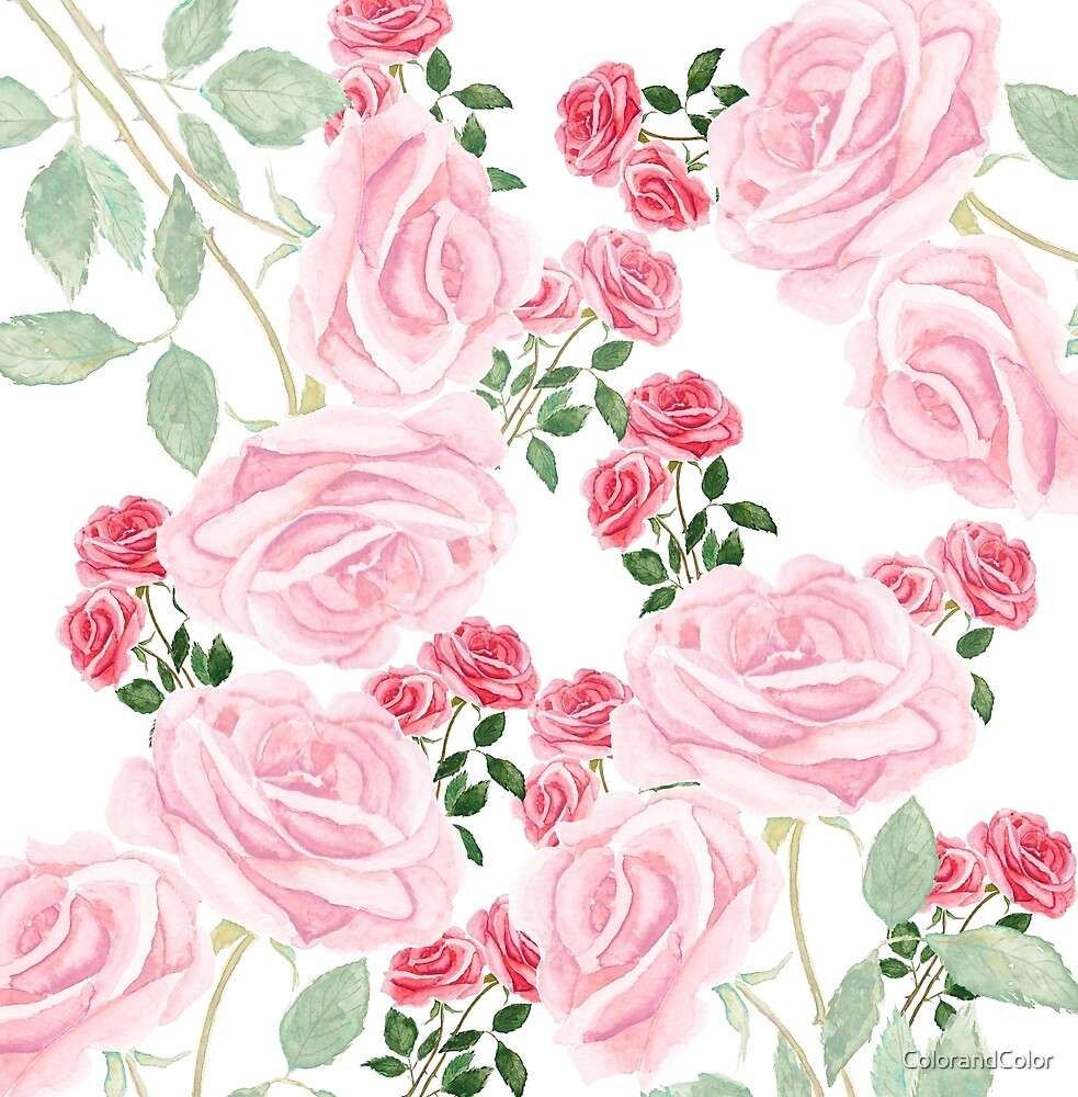 pink roses watercolor pattern  by ColorandColor
