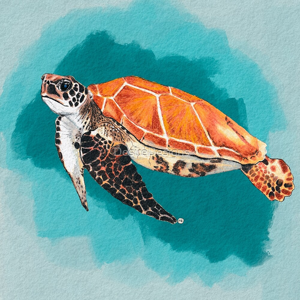 The Sea Turtle by DesireDesigns