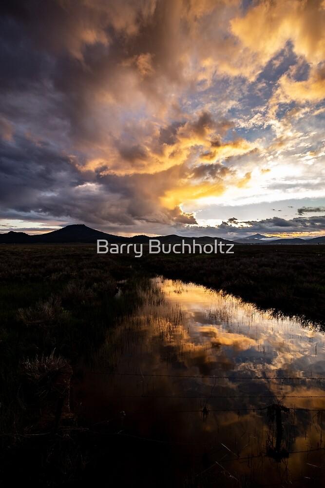Sunset 2 by Barry Buchholtz