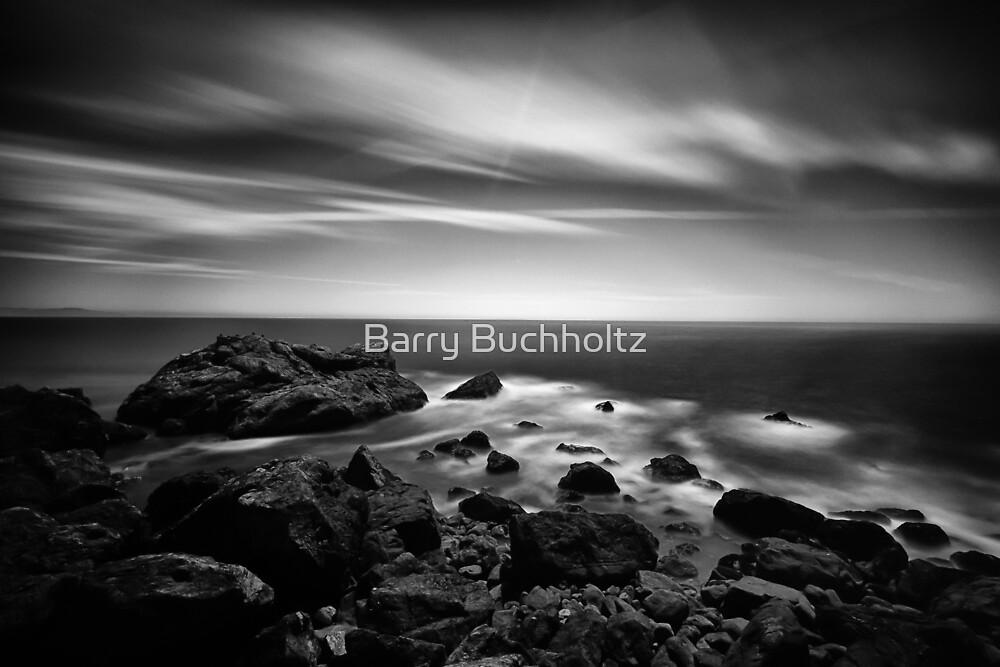 Sea Scape B&W by Barry Buchholtz