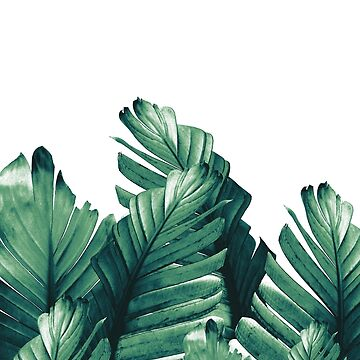Green Banana Leaves Dream #1 #tropical #decor #art by anitabellajantz