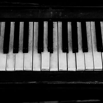 Piano keys black and white by SteviePix