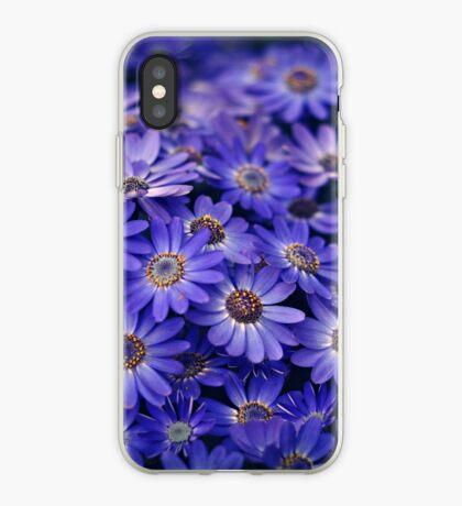 Cineraria Blue iPhone Case
