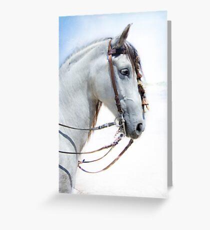 Poli Greeting Card