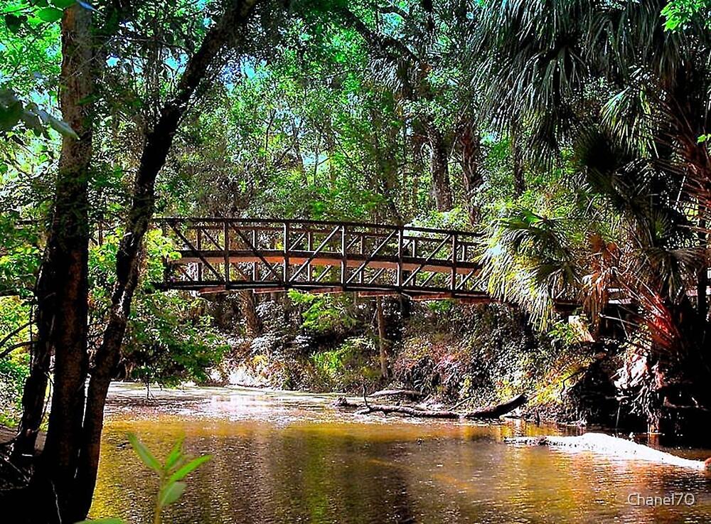 Tropical Hidden Bridge by Chanel70