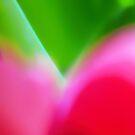 Colors of Spring 1 by Menega  Sabidussi