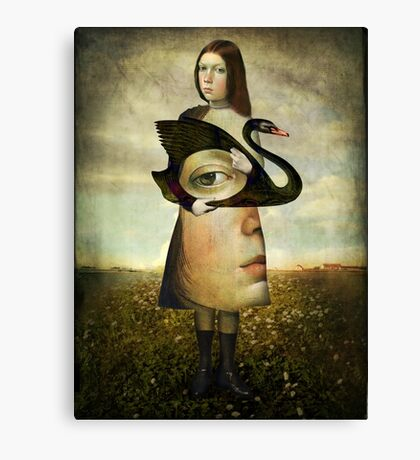 The second look Canvas Print