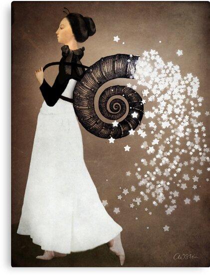 The Star Fairy by Catrin Welz-Stein
