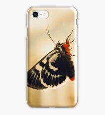 Lepidoptera iPhone Case/Skin