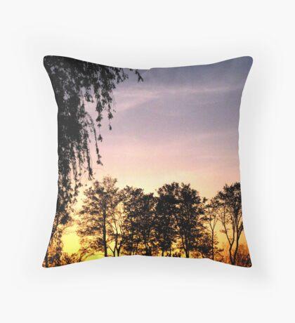 Open-Air Kingdom Throw Pillow