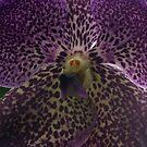 Beastly Flower by Lolabud