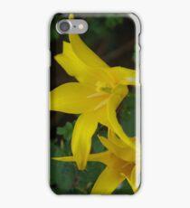 Yellow Tulips iPhone 7 Case