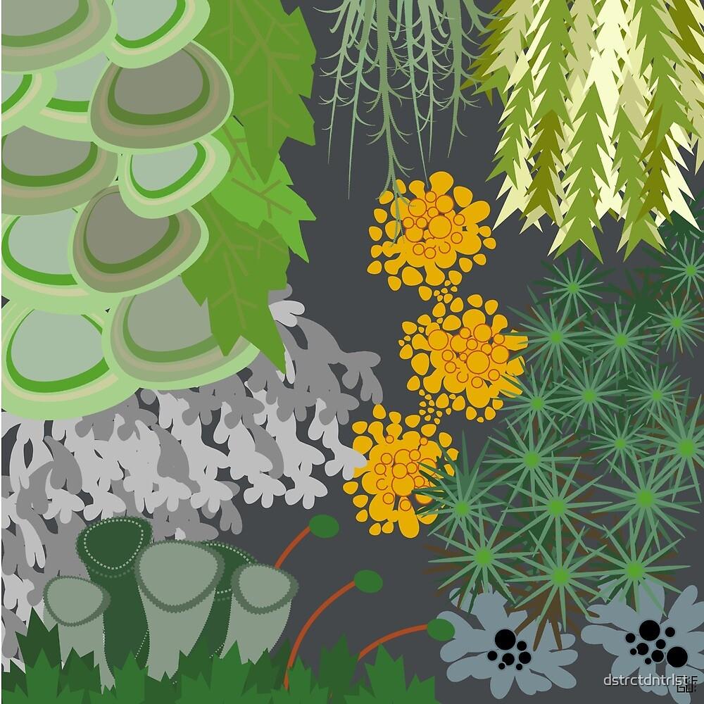 Tettegouche Moss and Lichen Collage by dstrctdntrlst