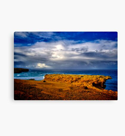 """""""At The Edge, In The Face Of A Storm"""" Canvas Print"""