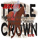 Justify Triple Crown 2018 Horse Racing by Ginny Luttrell
