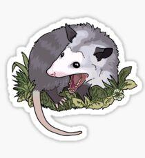 Screaming possum Sticker