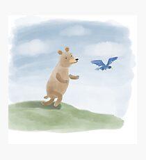 Bear chasing a bluebird Photographic Print