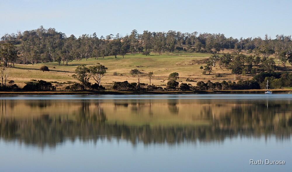 Tamar River Reflections - Tasmania by Ruth Durose