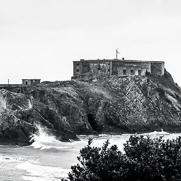 St Catherines Island Black & White by shane22