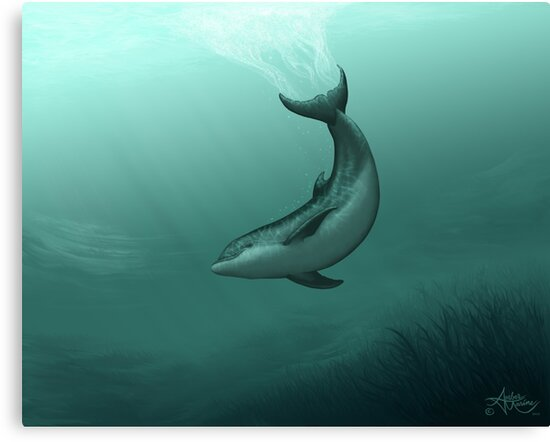 """Siren of the Lagoon"" by Amber Marine ~ inshore Indian River Lagoon dolphin painting, art © 2015 by Amber Marine ~ Wildlife Artist ~ © 2004-2018"