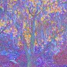 Oak tree by RoseSinister