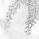 Winter Romance Redux by Aaron  Sheehan