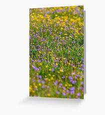 Flowers Flowers Greeting Card