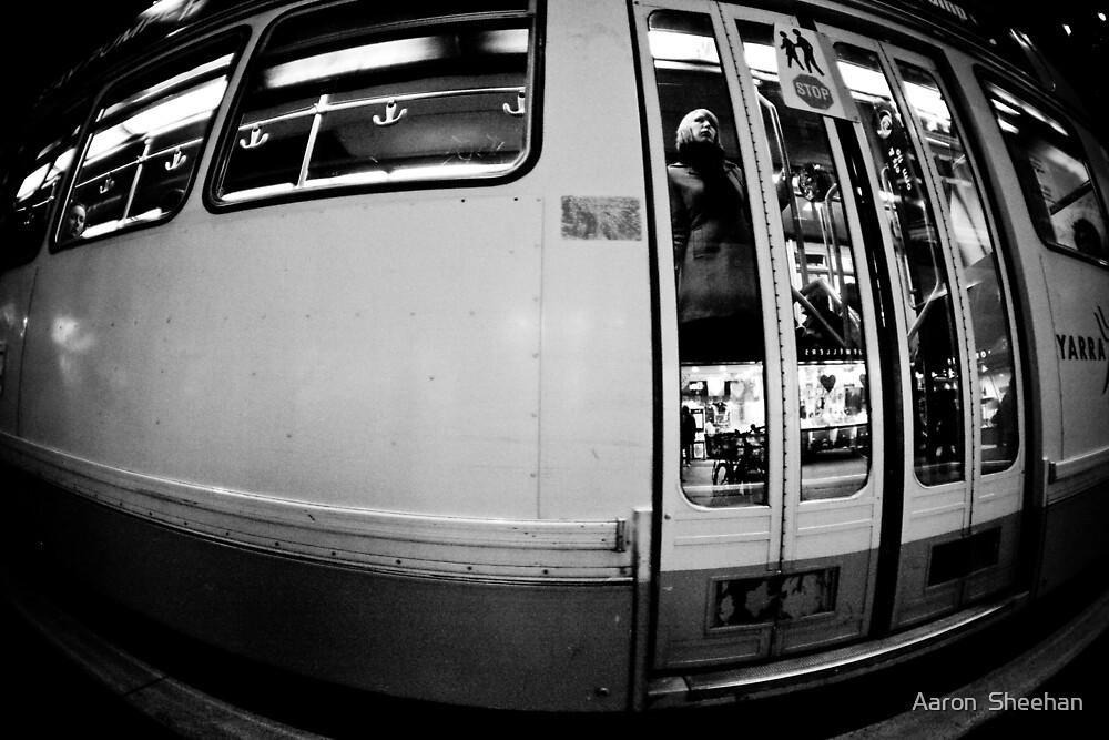 Big Tram by Aaron  Sheehan