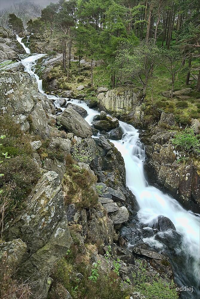 Rhaeadr Ogwen or Ogwen Falls by eddiej