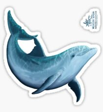 """Riversoul"" by Amber Marine ~ Indian River Lagoon bottlenose dolphin art, © 2014 Sticker"