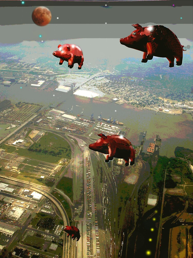 ANIMALS-PIGS pt I by PASSIONATE PLANET
