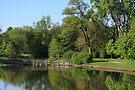 Barth Pond by Lyle Hatch