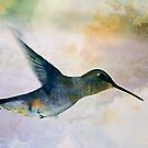 Black Chinned Hummingbird Textured Female by Ryan Houston