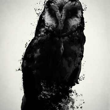The Owl by Nicklas81