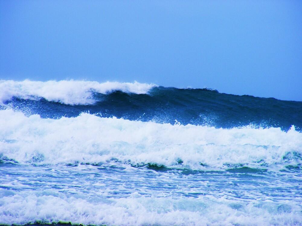 The oceans roar by Kelly d