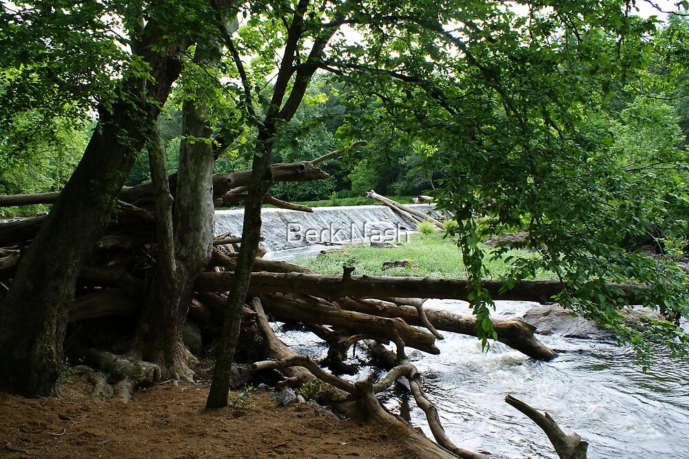 Dam on Eno River by Berk Nash