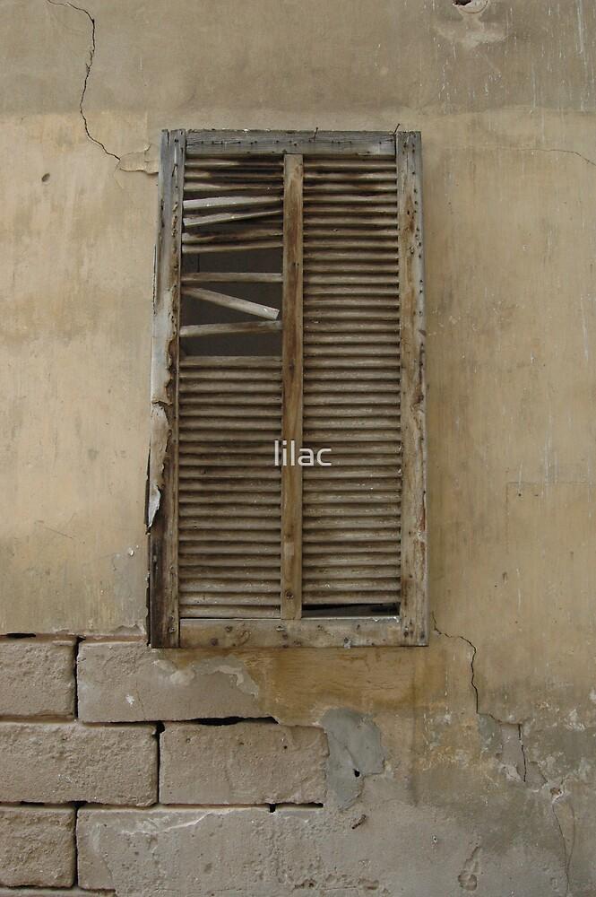 Old&Broken Window by lilac