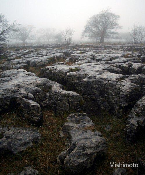 Limestone, Yorkshire by Mishimoto
