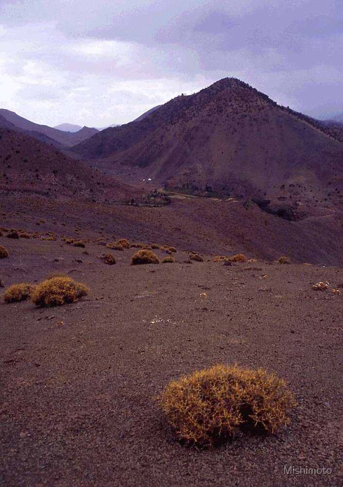 Bushes, Atlas Morocco by Mishimoto