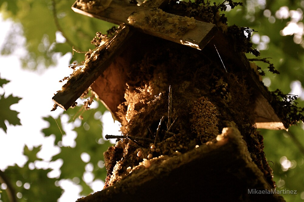 Birdhouse by MikaelaMartinez