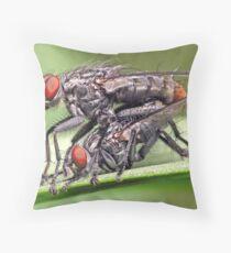 Mating Flies (1) ! Throw Pillow