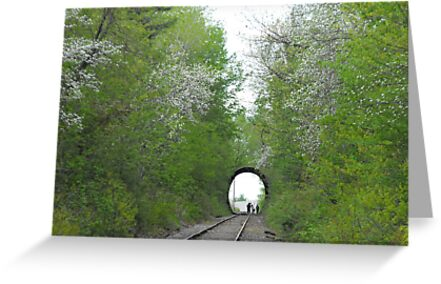 Tunnel in Spring by katpix