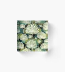 Dandelions Acrylic Block