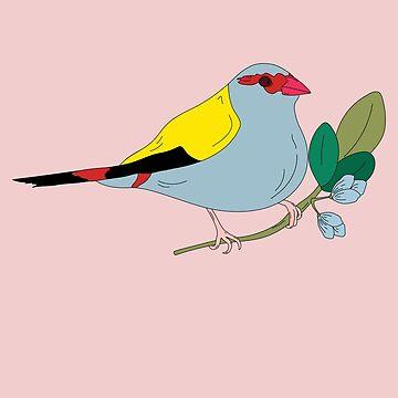 Firetail Finch by LizWallflower